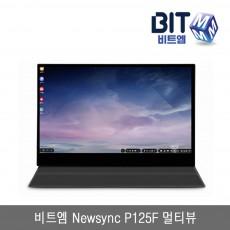 비트엠 Newsync P125F 멀티뷰