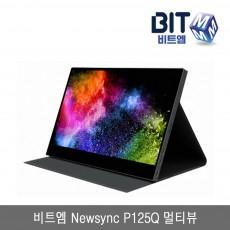 (등외품) 비트엠 Newsync P125Q 멀티뷰